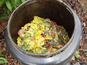 compost01